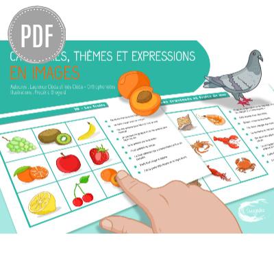 PDF — CATÉGORIES, THÈMES ET EXPRESSIONS