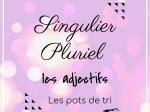 PDF — SINGULIER-PLURIEL | LES POTS DE TRI