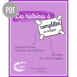 PDF — LES HISTOIRES A COMPLETER EN IMAGES